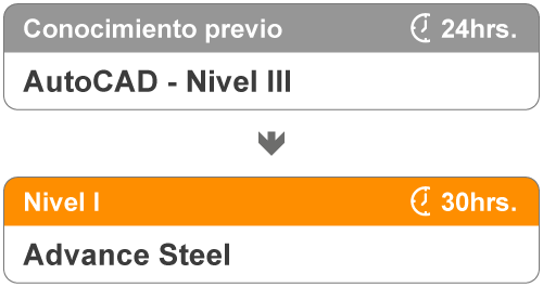 Niveles del curso de Advance Steel